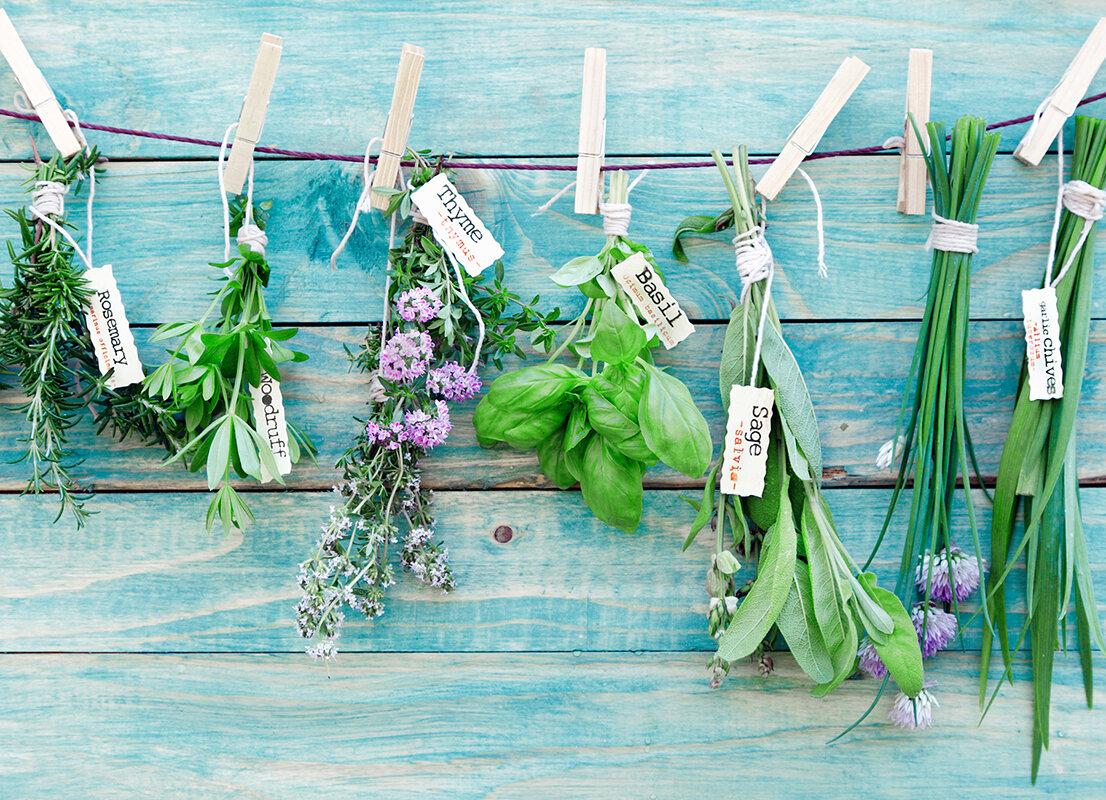 WallPops! Herbs Kitchen Wall Decal & Reviews   Wayfair