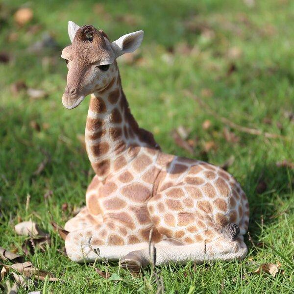 Hi Line Gift Ltd Laying Down Giraffe Statue Amp Reviews Wayfair