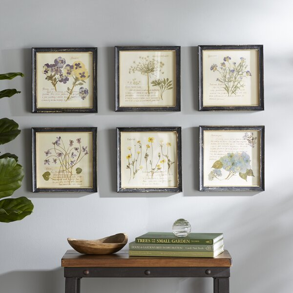 Birch Lane Pressed Flowers Framed Graphic Art Print