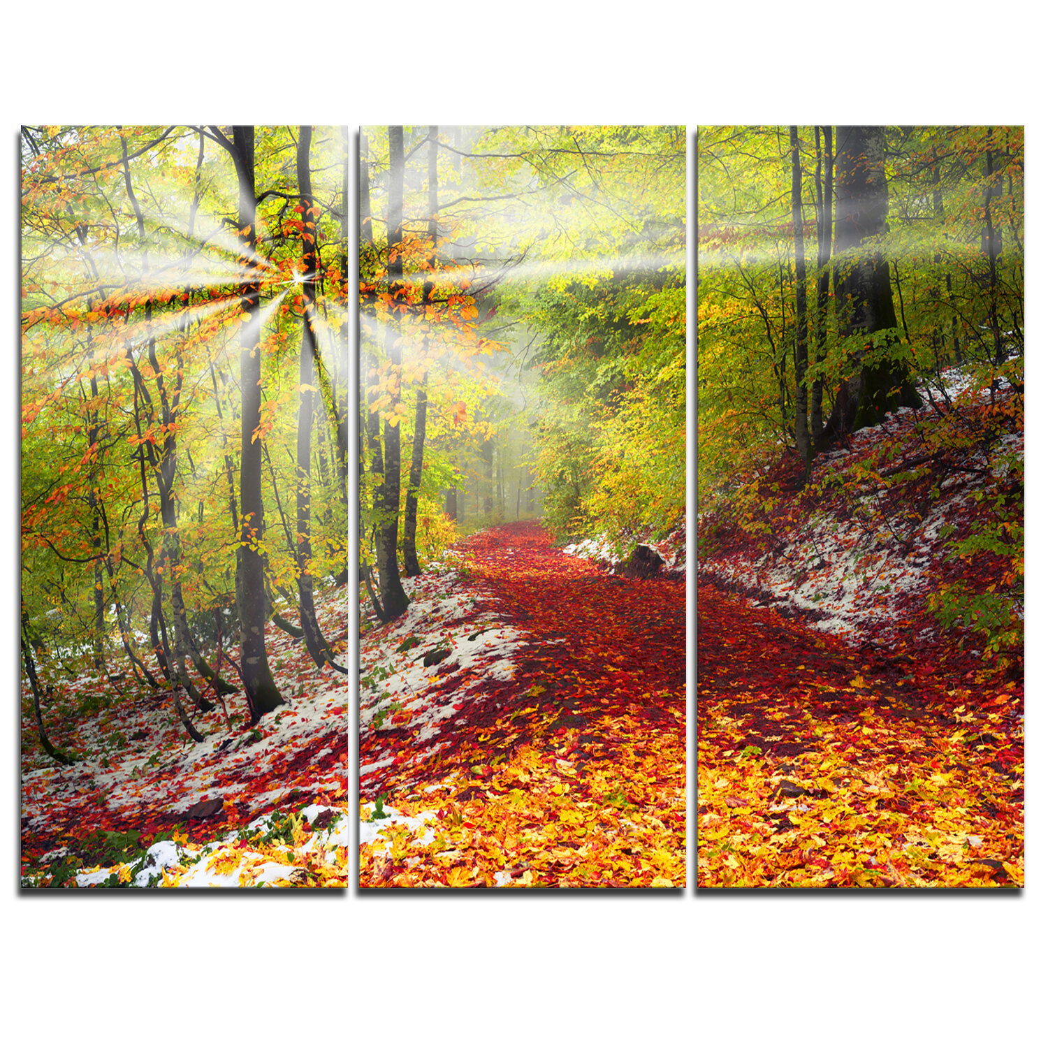 DesignArt Bright Colorful Alpine Forest - 3 Piece Wall Art on ...