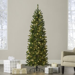 kingswood pencil 6 green fir artificial christmas tree with 200 clear lights - Slim Christmas Tree Decorating Ideas