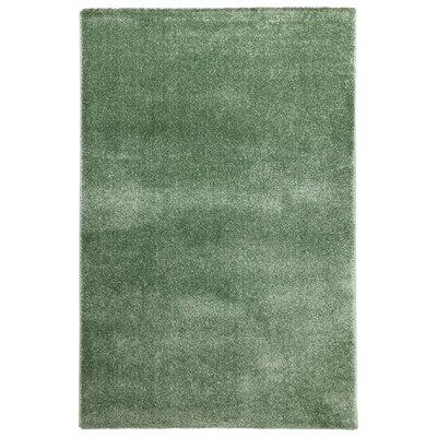 Green Rugs You Ll Love Wayfair Co Uk
