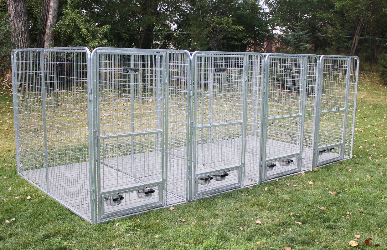 k9 kennel 5 dog galvanized steel yard kennel u0026 reviews wayfair