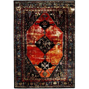 Amber Orange Rug by World Menagerie