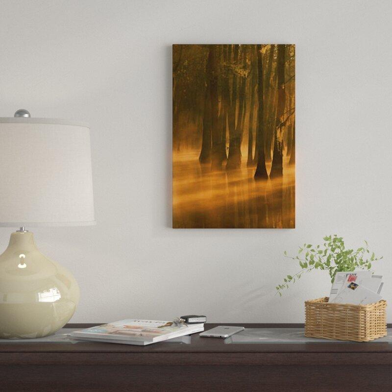 U0027Bald Cypress Swamp, Calcasieu River Backwater, Lake Charles, Louisianau0027  Photographic Print On Canvas