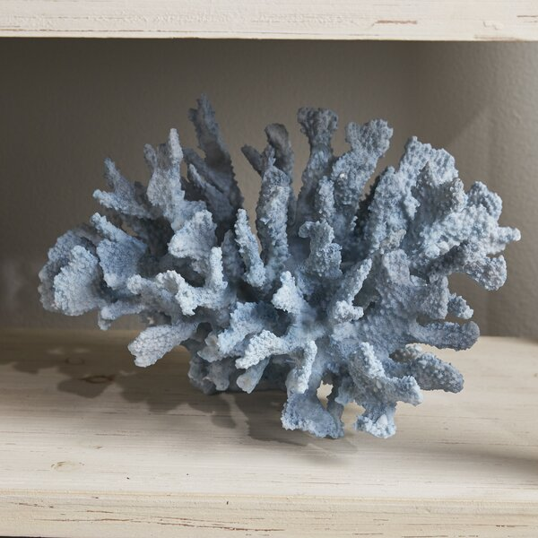 Decorative Coral Wayfair Amazing Faux Coral Decorative Accessories