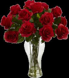 artificial flowers & plants you'll love | wayfair