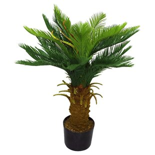 Artificial Cycas Tree by Geko Products