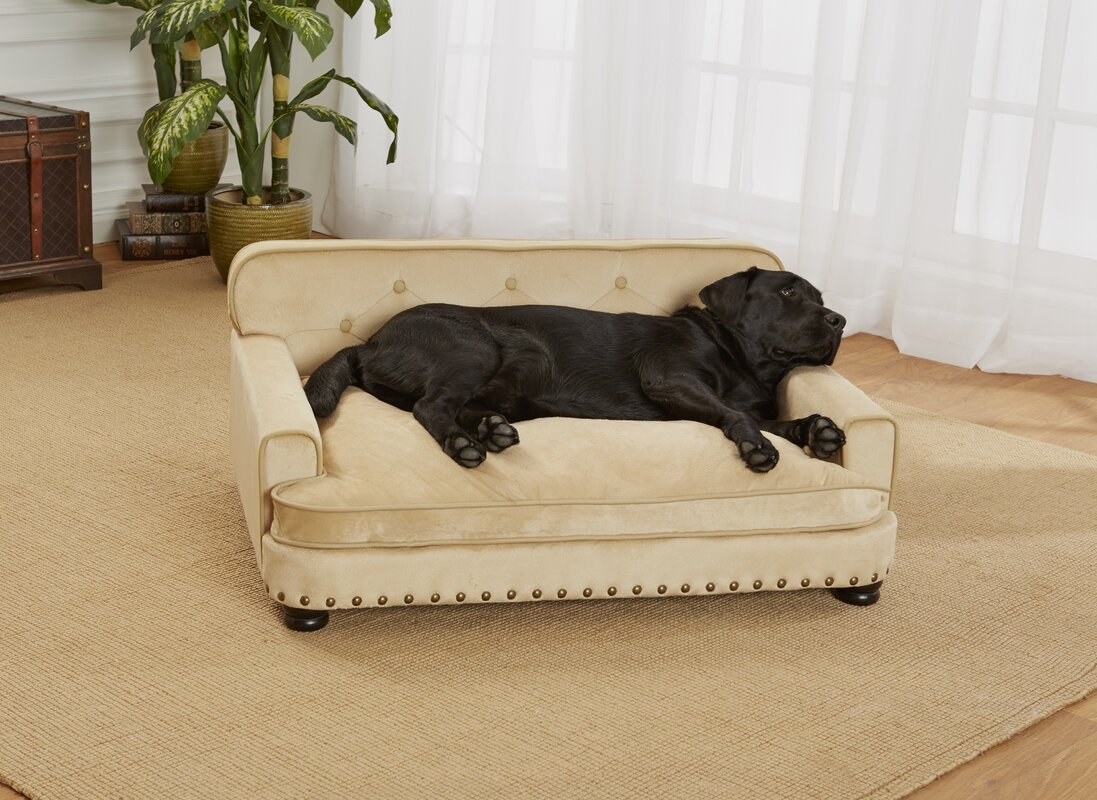 Dog Sofas For Large DogsMax Comfort Orthopedic Dog Beds Memory Foam Dog Beds