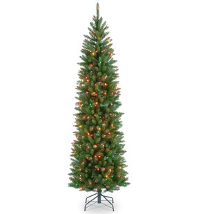7 Ft Tree Wayfair