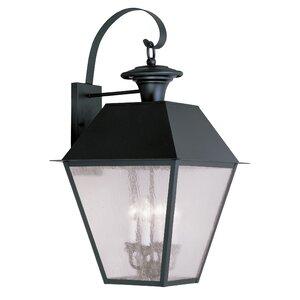 Cynda 4-Light Outdoor Wall Lantern