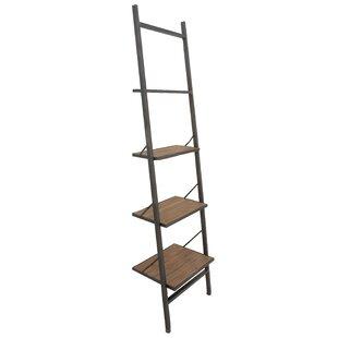 Hoadley Industrial Ladder Bookcase