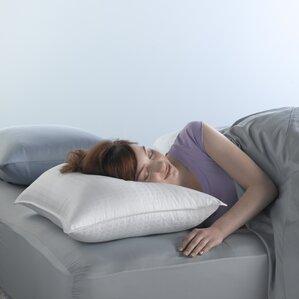 Spring Air?Won't Go Flat? Fiber and Foam Pillow by Spring Air