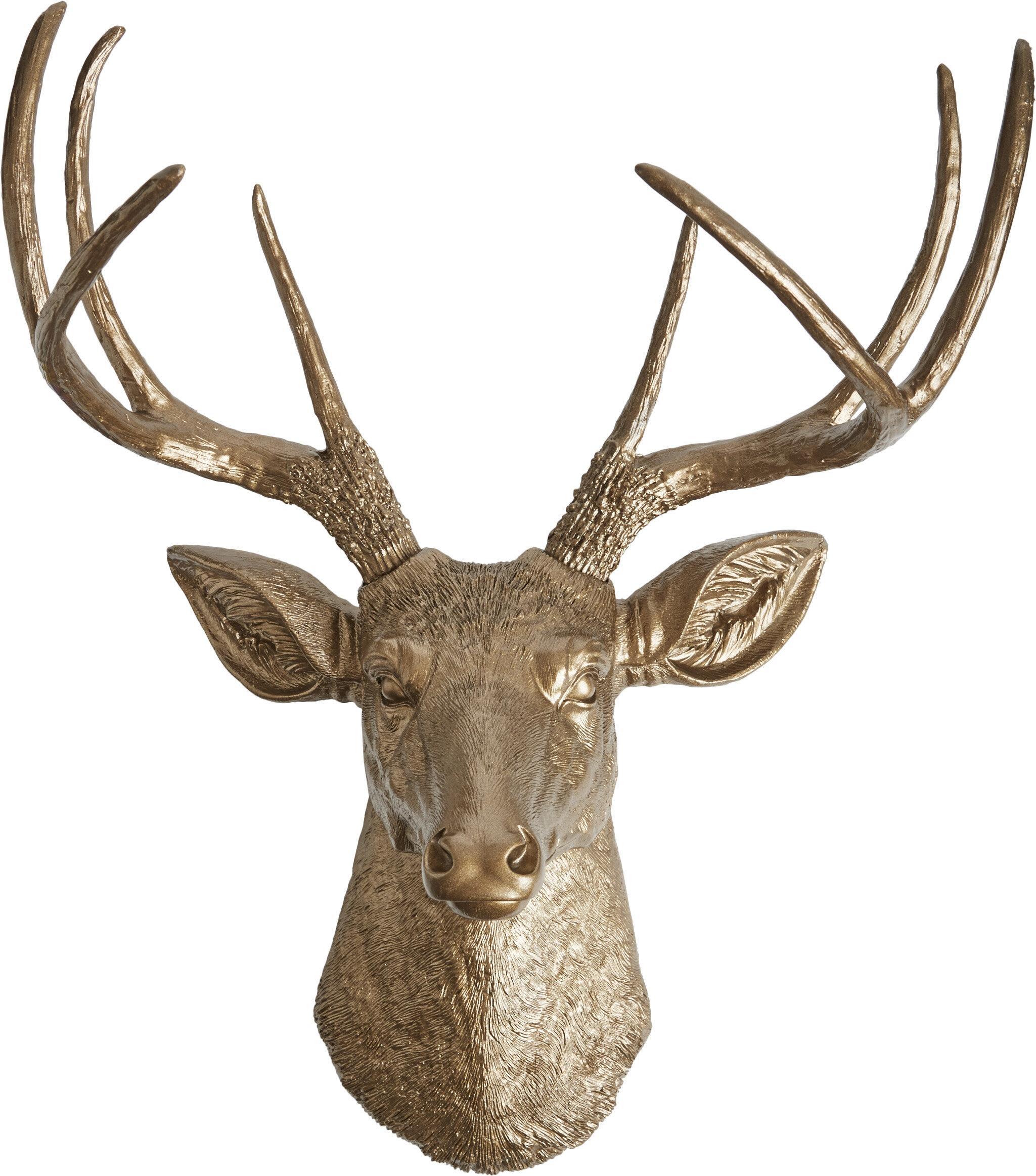 Deer Head Wall Art Part - 20: White Faux Taxidermy The Frankfurt Deer Head Wall Décor u0026 Reviews | Wayfair