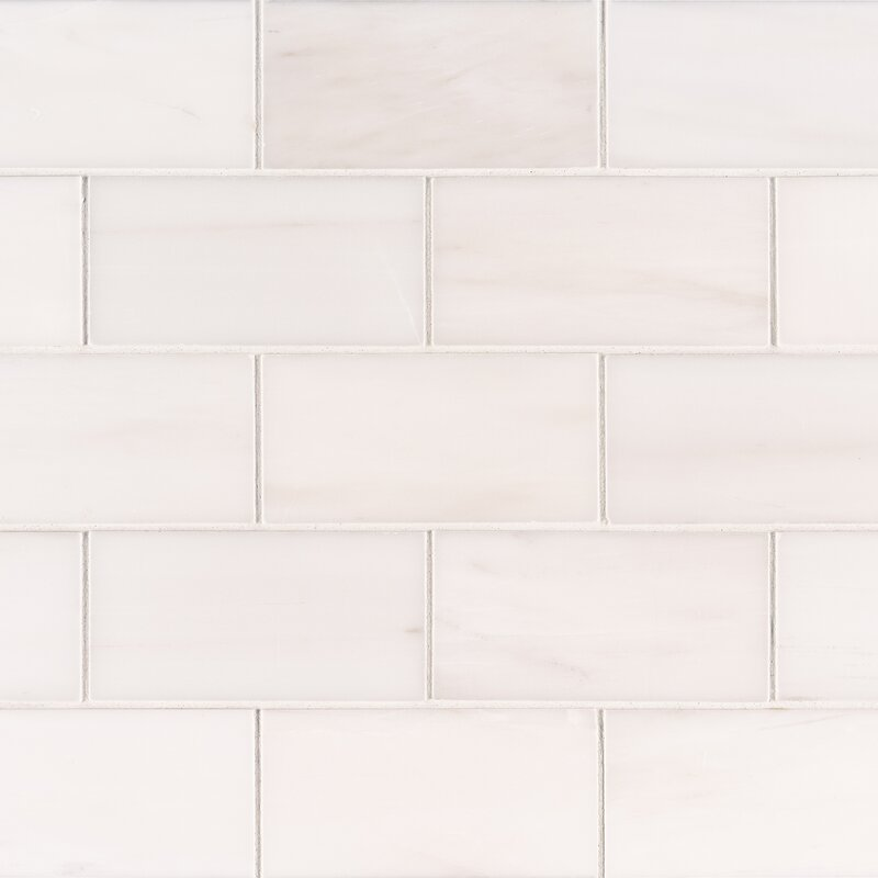 Msi Bianco Dolomite 3 X 6 Polished Marble Subway Tile In White