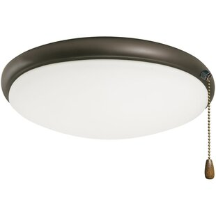 Pull String Ceiling Light | Wayfair