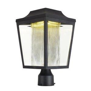 Beedle Outdoor 1-Light LED Post Lantern