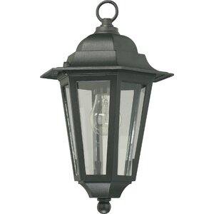 Mehar 1-Light Outdoor Hanging Lantern