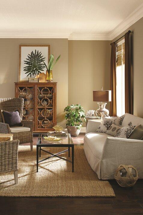 Living Room Decor: Living Room Design Ideas