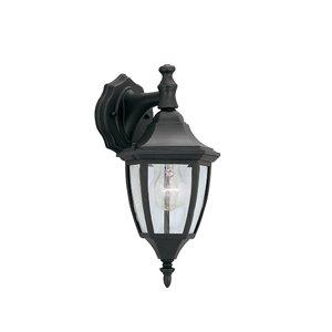 Slusser Traditional 1-Light Outdoor Wall Lantern