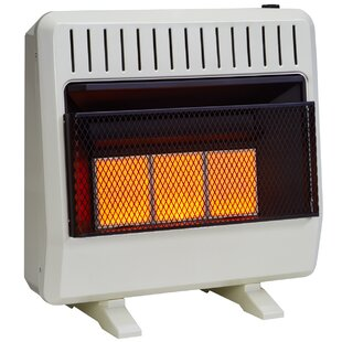 Natural Gas Space Heaters You Ll Love Wayfair
