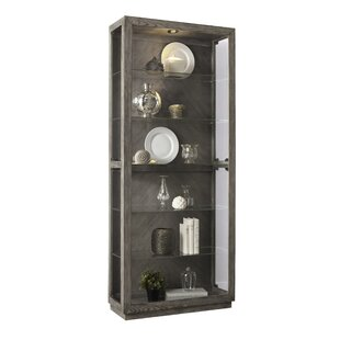 Aahil Lighted Curio Cabinet