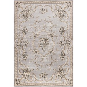 Vianney Aubusson Light Gray Area Rug