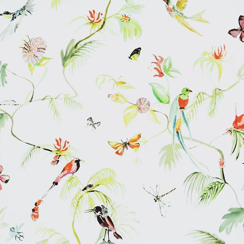 Walls Republic Classic 33 X 20 8 Quot Bird Of Nature