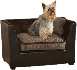 Attirant Shop Dog Beds By Type