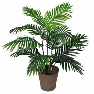 Artificial Plants & Trees You'll Love in 2019   Wayfair co uk