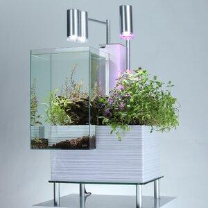 Nichol 9.5 Gallon Aquaponics Aquarium Kit