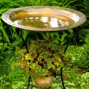 Copper Plated Steel Birdbath (Set Of 2). By Ancient Graffiti