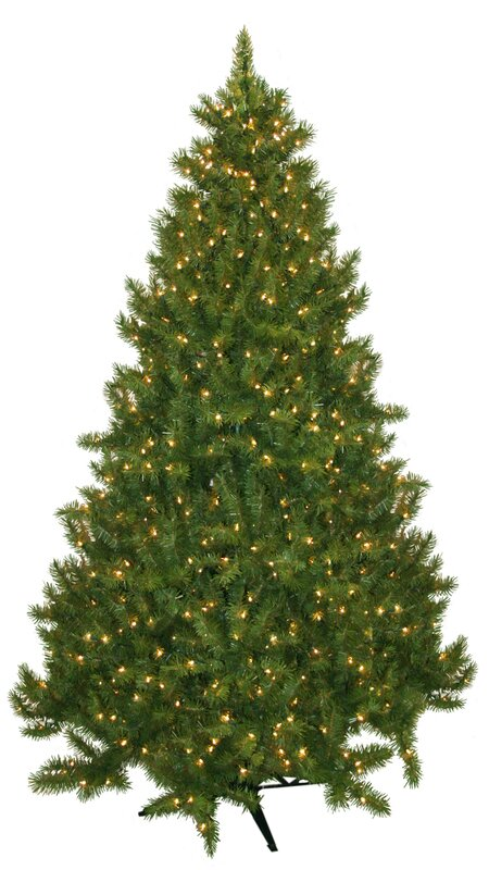 laurel foundry modern farmhouse 75 evergreen fir artificial christmas tree with 700 clear lights reviews wayfair - Christmas Trees With Lights