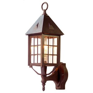 Joy 1-Light Outdoor Sconce