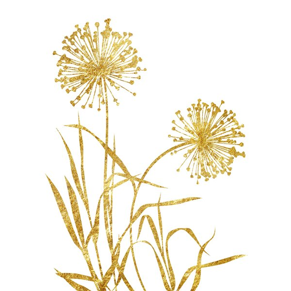 Very best PTM Images Dandelion Framed Graphic Art on Wrapped Canvas | Wayfair ED88