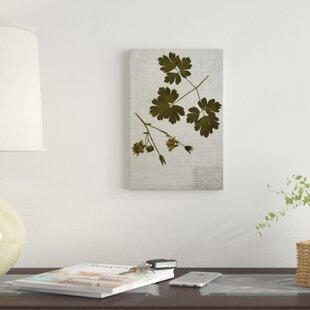 U0027Pressed Leaves On Linen Iu0027 Graphic Art Print On Canvas