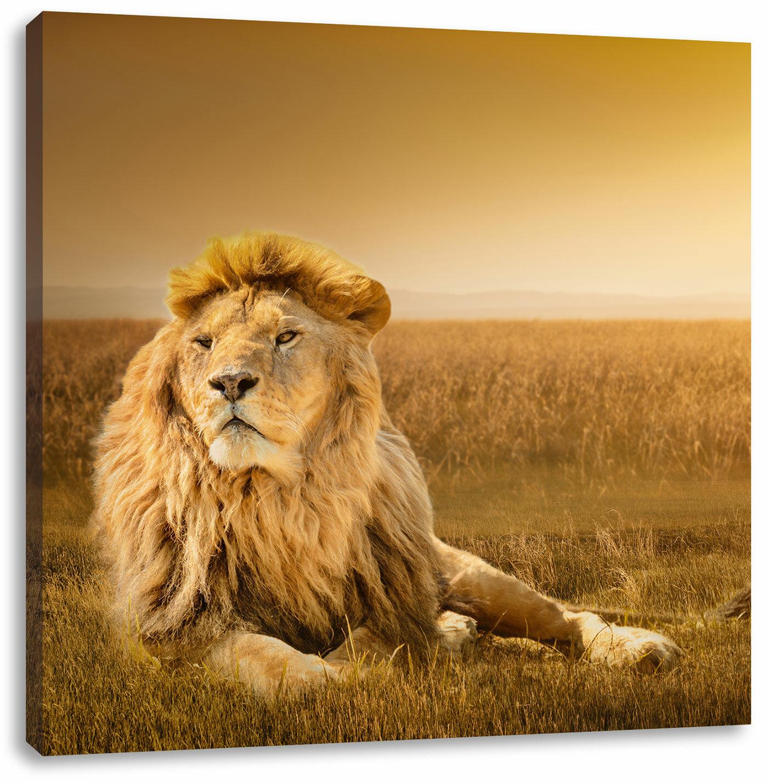 East urban home majestic lion art print on canvas wayfair co uk