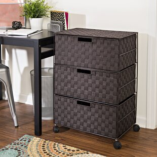 Save & Storage Chest With Drawers | Wayfair