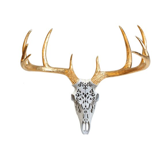 Loon Peak Decorative Deer Skull Boho Wall Decor & Reviews | Wayfair
