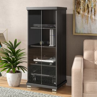 Trend Media Storage Cabinet With Doors Decoration Ideas
