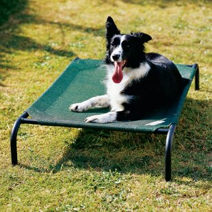Outdoor Waterproof Dog Beds Wayfair