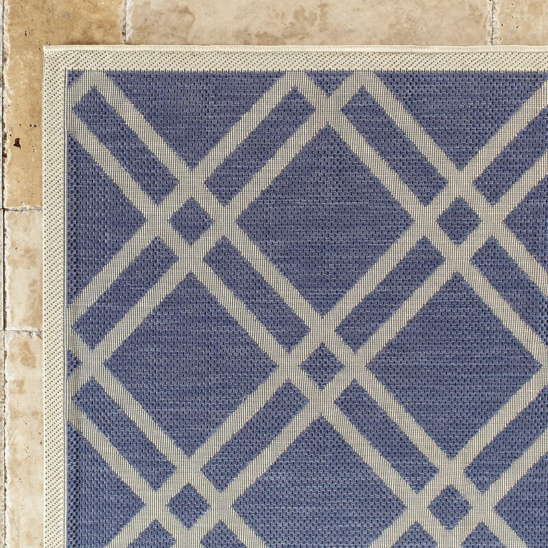 Cedric Indoor/Outdoor Rug & Reviews | Birch Lane