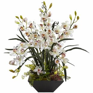 White orchid arrangements wayfair save mightylinksfo