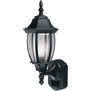 Lakeside 1 Light Contemporary Outdoor Sconce