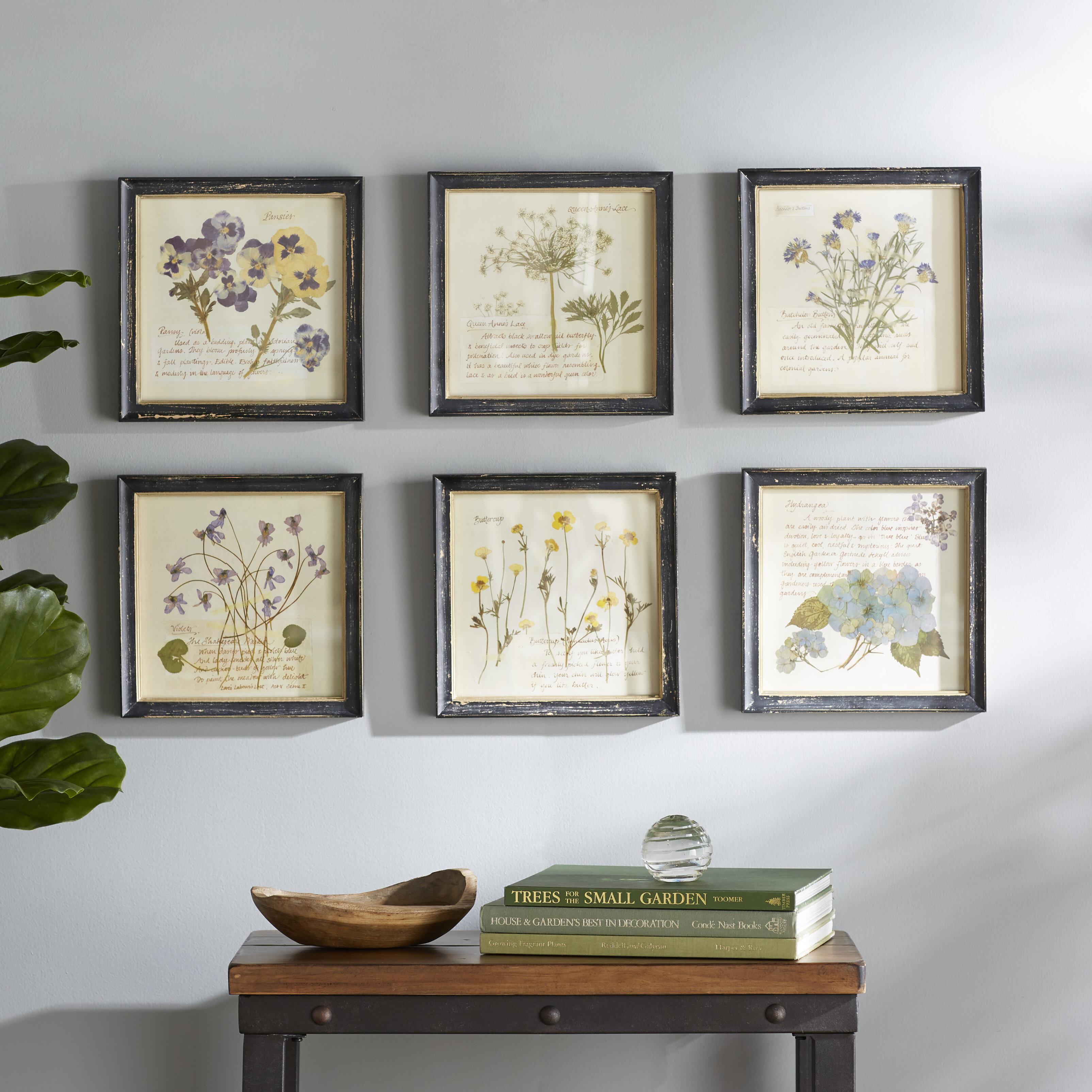 Birch Lane™ Heritage 'Pressed Flowers' 6 Piece Framed Graphic Art Print Set on Wood & Reviews | Birch Lane