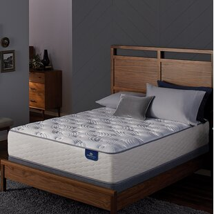 Twin Mattress Box Spring Set | Wayfair