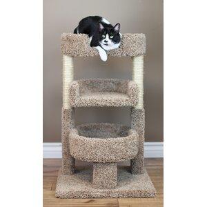 New Cat Condos Round 33