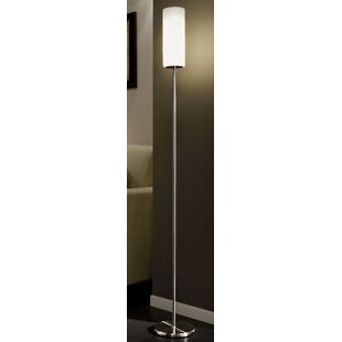 Battery operated floor lamp wayfair troy 153cm floor lamp aloadofball Gallery