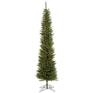c03238fb16b72 Durham Pole 5.5  Green Pine Artificial Christmas Tree with 150 LED White  Lights with Stand