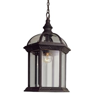 Elettra 1 Light Outdoor Hanging Lantern